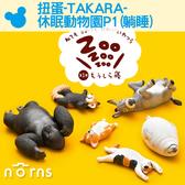 【扭蛋-TAKARA-休眠動物園P1(躺睡)】Norns 柯基 驢子 貓 公仔 盒玩 轉蛋 隨機出貨 聖誕節禮物