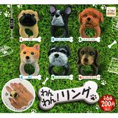 全套6款【日本正版】小狗造型戒指 扭蛋 轉蛋 戒指 飾品 - 205780