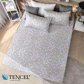天絲床包三件組 加大6x6.2尺 柏爾曼(灰) 100%頂級天絲 萊賽爾 附正天絲吊牌 BEST寢飾