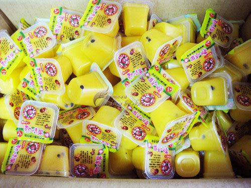~~特價免運~~團購價--百香果凍6kg、有籽的喔!埔里百香果園