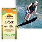 《Sundown日落恩賜》勇健UCII®非變性二型膠囊(60粒/盒)(效期至2020.10.31)