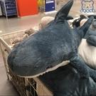 公仔 鯊魚抱枕毛絨玩具網紅可愛布娃娃床上睡覺玩偶靠墊生日禮物女交換禮物 漫步云端