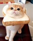ins寵物貓搞怪頭套吐司面包頭套小貓【時尚大衣櫥】