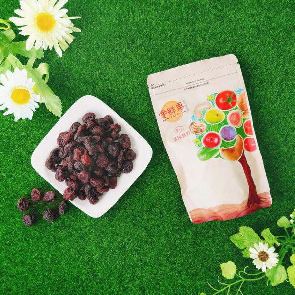 【愛盲庇護工場】整顆蔓越莓乾 ~愛鮮果系列 (隨手獨享包90g)