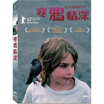 寒鴉情深DVD