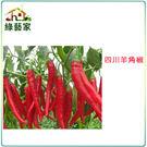 【綠藝家】G37.四川羊角椒種子(一般辣...