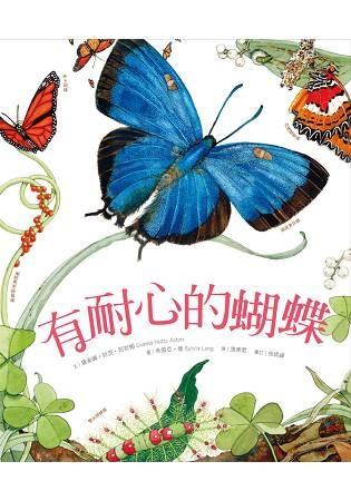 有耐心的蝴蝶
