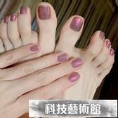 紫色人魚姬手腳趾甲貼片穿戴甲成品美甲貼片網紅鏡面粉假指甲貼片 交換禮物