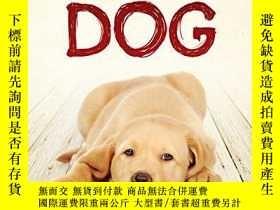 二手書博民逛書店The罕見True Confessions of a Badly Misunderstood Dog-一只被嚴重誤