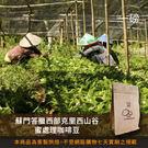 【咖啡綠商號】蘇門答臘西部克里西山谷蜜處理咖啡豆(一磅)