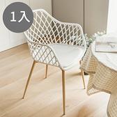 餐椅 休閒椅 工作椅 椅【K0065】Nizza 幾何簍空餐椅(三色) 收納專科