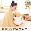 【03498】 雙人尺寸 可愛倉鼠懶人毯...