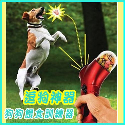 PET TREAT LAUNCHER逗狗神器/ 狗狗餵食訓練器 (隨機色) 99元
