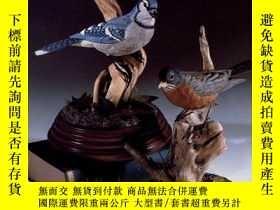 二手書博民逛書店Songbird罕見Carving IIY19139 Rosal