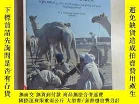 二手書博民逛書店外文書罕見THE ONE-HUMPED CAMEL IN EASTERN AFRICA 共282頁 精裝本Y1
