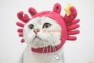 寵物頭套可愛螃蟹頭套英短加菲貓咪狗狗搞笑抖音同款寵物網美帽子【小獅子】