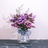 花瓶天然北歐真勿忘我干花花束家居擺設客廳干枝混合式【週年慶免運八折】