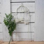 《齊洛瓦鄉村風雜貨》日本zakka雜貨 日本Paseo 園藝貓咪與鳥籠花插 鐵製花插 造型花插