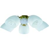 【大巨光】吊扇燈具(WT-424)