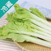 【產銷履歷】鮮採小白菜1包(250g±5%/包)【愛買冷藏】