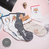 現貨✶正韓直送【K0241】韓國襪子 柴犬日常系列中筒襪 韓妞必備 百搭款 素色襪 免運 阿華有事嗎