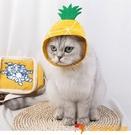 搞笑寵物頭飾貓咪狗狗菠蘿頭飾品小型犬頭套寵物用品【小獅子】
