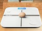 電子秤0.01人體秤稱體重秤成人可稱三百...