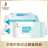 孕產護理濕巾60抽*3 產前產後生理期私處濕巾 天然溫和護膚 幸福第一站