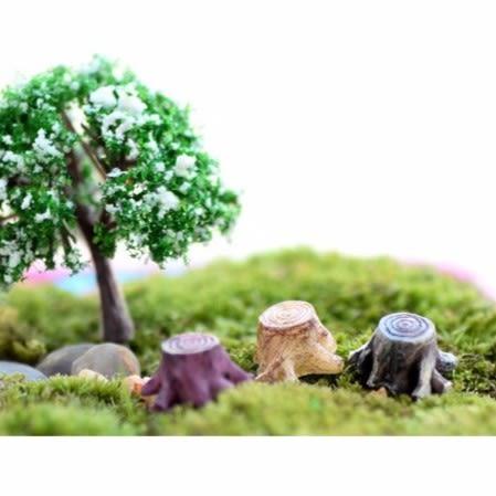ⓒ迷你樹樁微景觀 多肉植物創意裝飾【A002014】