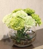 仿真花非洲菊康乃馨花束 瓶插花餐桌花 手捧花假花母親節禮品 向日葵