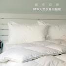 【雙人羽絨被(1.2公斤 立體邊 羽絨:羽毛=98:2)】40支純棉表布《輕量保暖》-麗塔LITA-
