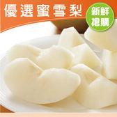 【鮮食優多】新社鮮甜蜜雪梨【特大】6顆(14兩以上/粒)