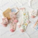 2020秋冬新款女襪軟萌草莓系列中筒襪棉襪小碎花網紅推薦款