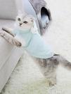 寵物衣服 小貓咪衣服網紅幼貓奶冬天英短布偶貓貓寵物保暖可愛秋冬季的冬裝