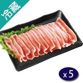 台灣珍豬里肌火鍋片400G/盒X5【愛買冷藏】
