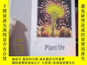 二手書博民逛書店YOUG罕見SCIENTIST Plant lifeY15389