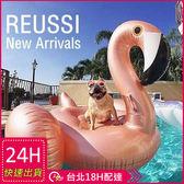 梨卡★現貨 -大型玫瑰金火烈鳥獨角獸造型特色充氣游泳圈座騎坐騎浮排 M089