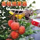 摘果器 摘果器采摘楊梅荔枝龍眼水果伸縮修枝剪采摘水果摘荔枝摘龍眼神器