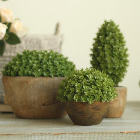 【高款】綠色環保植物仿真盆栽辦公桌擺設擺件 萬年青