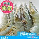 【台北魚市】白蝦 (蝦磚) 600g±10%( 580g以上)