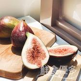 【鮮食優多】光騏果園・有機轉型無花果1斤
