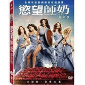 慾望師奶 第六季 DVD 歐美影集 (OS小舖)