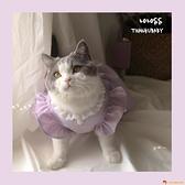 網紅寵物衣服狗狗貓咪衣服/小紫小綠少女裙純棉春夏薄款【小獅子】