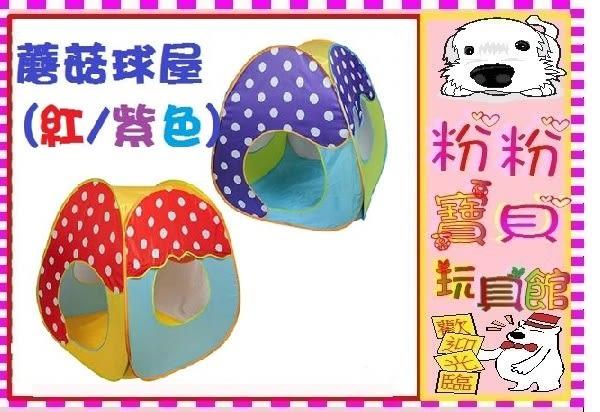 *粉粉寶貝玩具*蘑菇球屋~不含球賣場