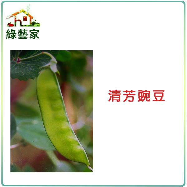 【綠藝家】E05.清芳碗豆(嫩夾)種子100顆