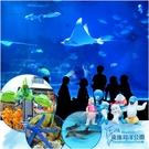 【花蓮】遠雄海洋公園-雙人套票(含餐飲抵用券200元)