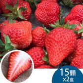 (2盒)天藍果園-大湖草莓(15顆)含運組