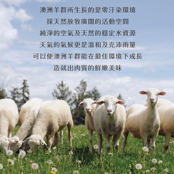【免運直送】澳洲帶骨小羊排10包組(100公克/2片)