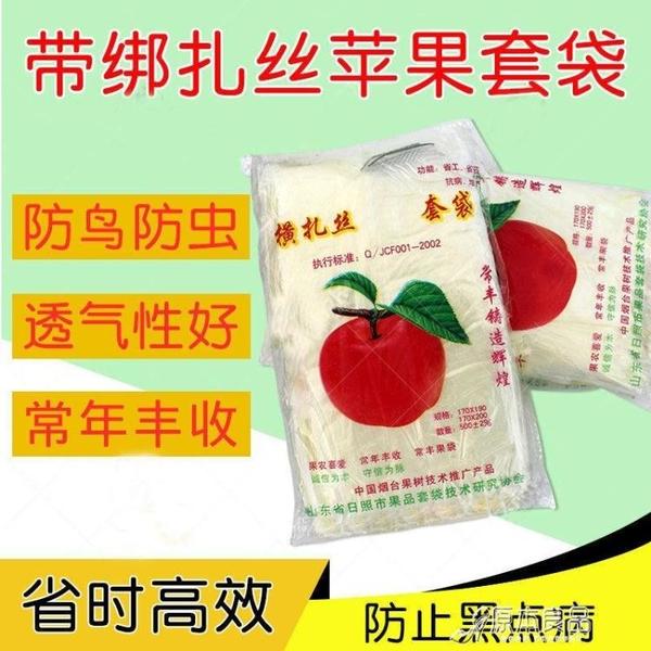 防蟲果網 塑料水果袋套袋保護包果袋防水透明防蟲防雨袋子【快速出貨】