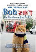 Bob又來了